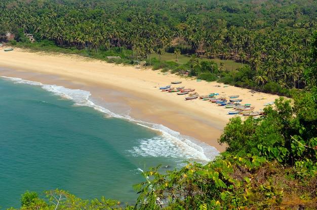 Перспективный вид на желтый песчаный пляж с синим тропическим морем с одной стороны и зелеными деревьями и пальмами с другой стороны
