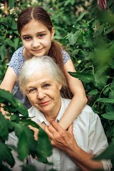 幸せな少女と彼女の祖母の肖像画。祖母と孫娘の庭で夏の日。祖父母の日コンセプト