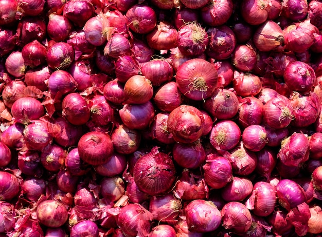 Красный лук. фон и текстура. экологическая фермерская продукция