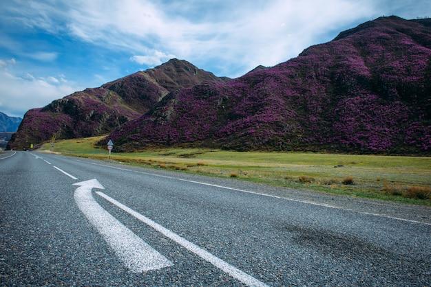 Асфальтовое покрытие двухполосного шоссе с белыми разметками и дорожными знаками на обочине