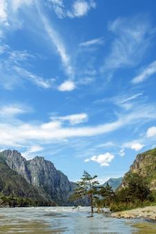 Живописный горный пейзаж в солнечный летний день. река и скалистые горы против голубого неба. сосна стоит в воде на берегу реки.