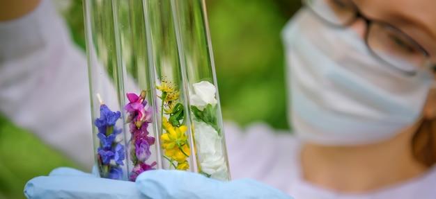 植物サンプルが入ったガラス製試験管、クローズアップ。背景をぼかした写真、フラスコを保持している医療用手袋の女性の手。