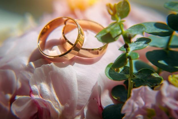 金の結婚指輪と繊細なピンクの花、セレクティブフォーカス、クローズアップ。コピースペースでの結婚式の写真。