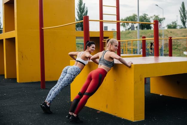 アスレチックでセクシーな女の子は屋外で同期して腕立て伏せをします。フィットネス、健康的なライフスタイル