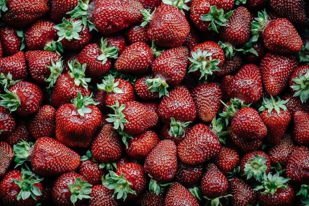 Большая коробка спелой и красивой клубники. ягоды.
