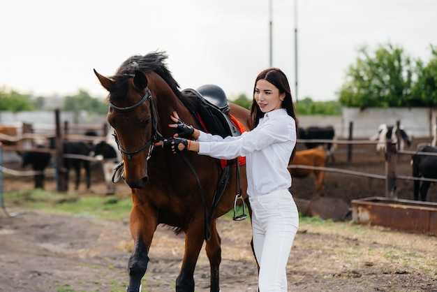 Молодая красивая девушка всадник позирует рядом с чистокровным жеребцом на ранчо. верховая езда, скачки.