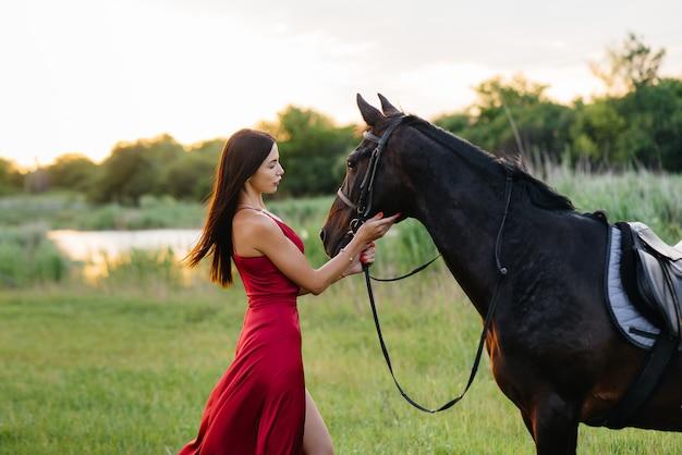 Молодая красивая девушка в красном платье позирует на ранчо с чистокровным жеребцом на закате. любовь и забота о животных.