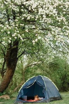 子供の観光。キャンプ場のテントでノートパソコンを使用している子。
