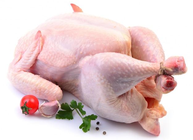 分離された鶏