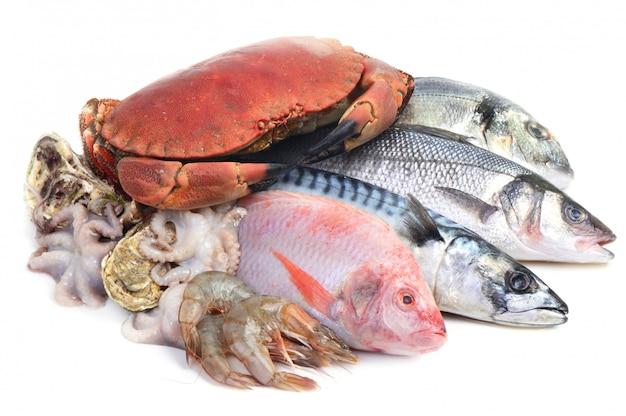 分離した新鮮な魚介類