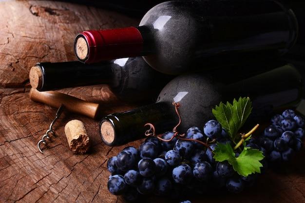 ワインセラー、今年の収穫