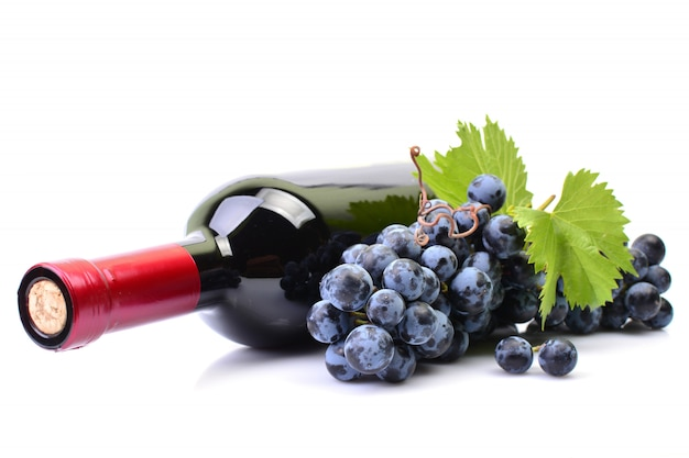 Бутылка вина на белом