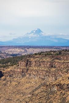 Вертикальная съемка красивого каньона со скалистыми утесами и высокой снежной горы