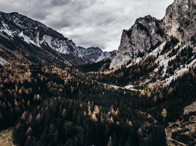 Красивые высокие скалистые горы с лесом между ними