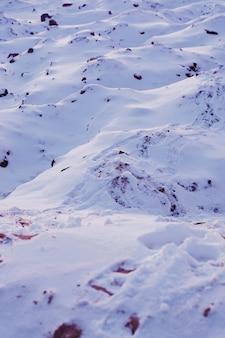 晴れた日の間に白い雪に覆われた表面の美しいショット