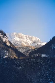 厚い緑の森が前に広がる美しい雪山