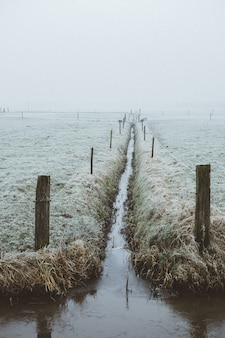 Узкий водный путь в туманном поле