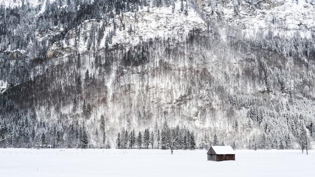 Широкий снимок небольшого деревянного домика на снежной поверхности возле гор и деревьев, покрытых снегом