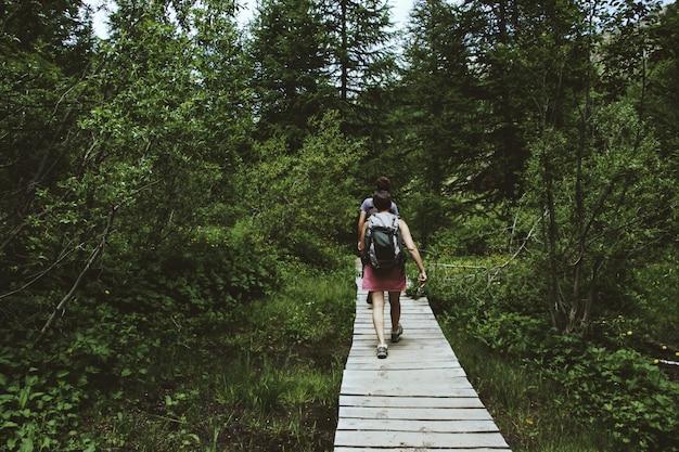 Широкий выстрел туристов, гуляющих по деревянной тропинке в окружении зеленых деревьев