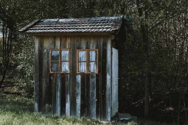 Небольшой деревянный домик с коричневыми окнами с белыми занавесками в лесу, окруженном деревьями