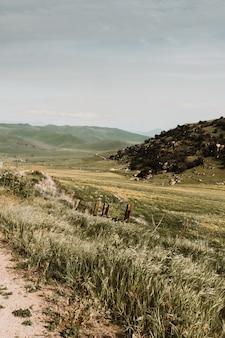 美しい田園地帯の低地と丘の素朴な風景