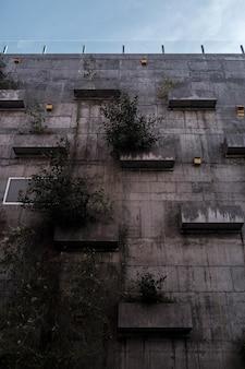 Высокое здание с растениями на нем