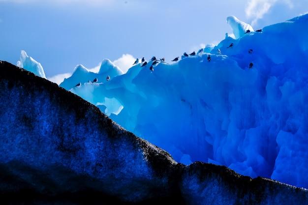 背の高い氷山のペンギンのグループのワイドショット