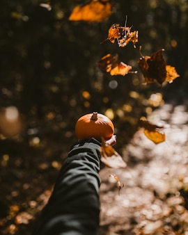 秋のシーズン中にカボチャを持っている人の垂直ショット
