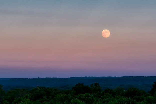 濃い緑の森の上の夕方の空に大きな灰色の月の美しいショット
