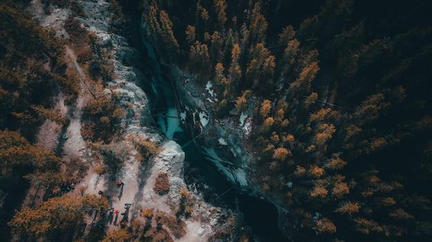 Высокий угол выстрела реки, проходящей через тропический лес, полный деревьев