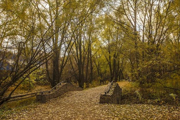 ロシアのロストルキノ公園で緑の葉のある木の真ん中に水にかかる橋