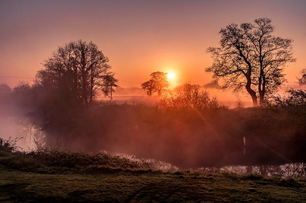 素晴らしい森と夕日