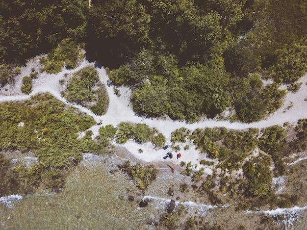 昼間は緑の葉が茂った木で覆われた海岸に打ち寄せる海の波のオーバーヘッドショット