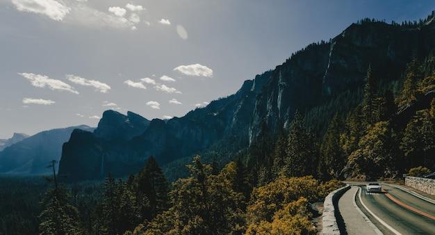 Захватывающие дух удивительные пейзажи красивого леса в сельской местности