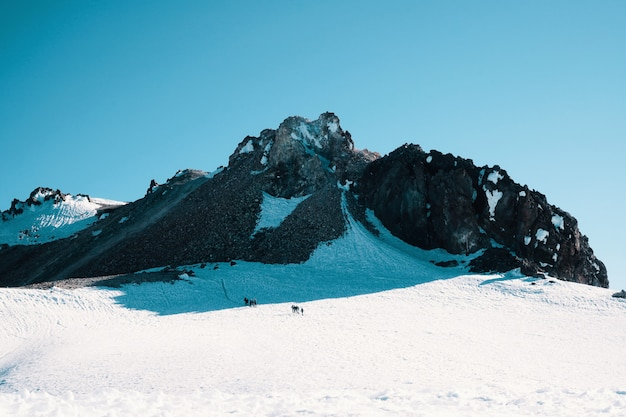 美しい青い空の下でロッキー雪山