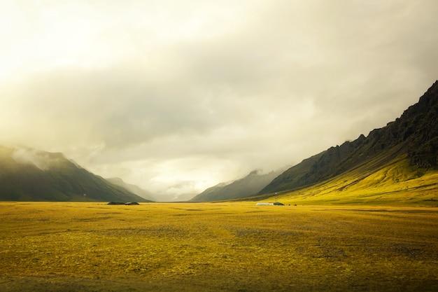 素晴らしい曇りの美しい黄金のフィールド