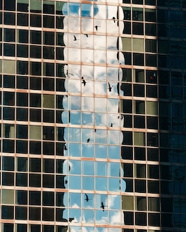 ガラスの超高層ビルで空に鳥の反射