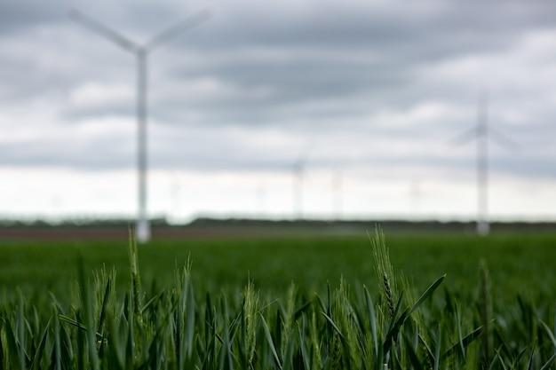 ぼやけて背景に曇り空の下で白い風車と草します。
