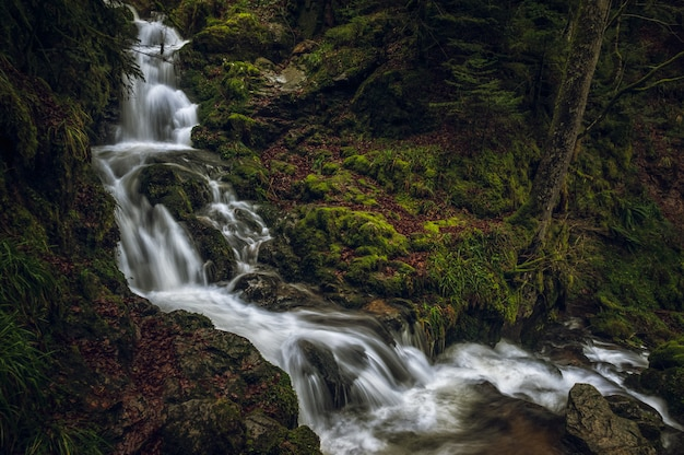 Красивые пейзажи мощного водопада в лесу возле мшистых скал