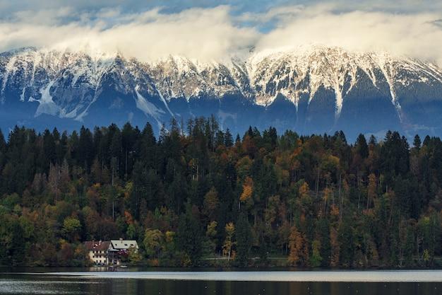 ブレッド、スロベニアの背景に雪に覆われた山々と湖の近くの美しい木の森