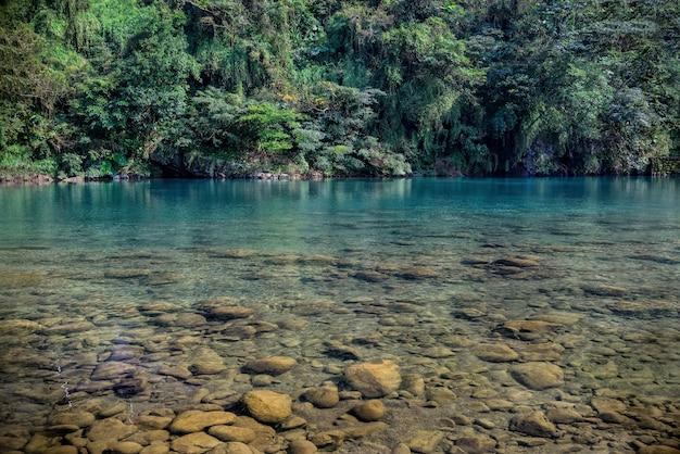 台湾平林村の緑のプランテーション近くの湖の美しいショット