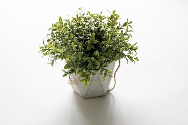 白い表面に植木鉢のハイアングルショット