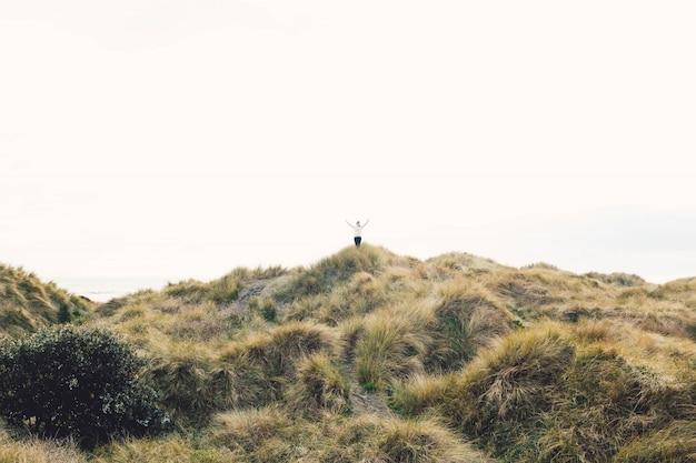 澄んだ空の下で乾いた草で覆われた丘の上に立っている人
