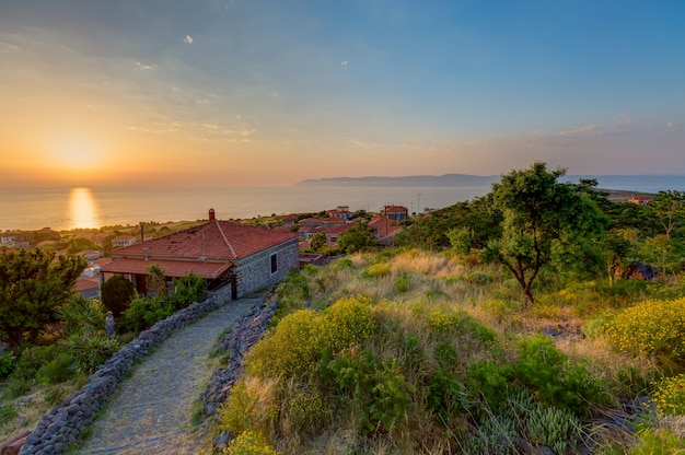 ギリシャ、レスボス島で撮影された夕日の下の木々の家のハイアングルショット