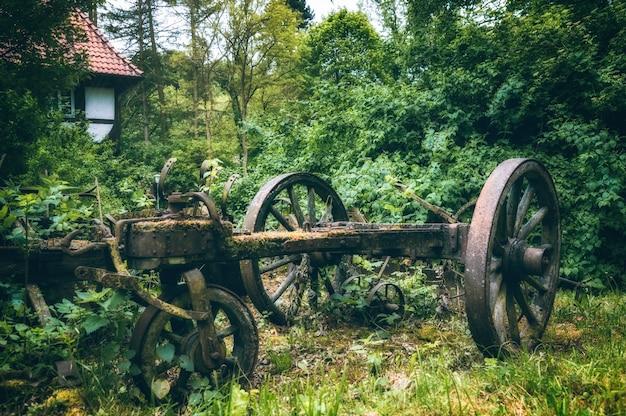 木々に囲まれた古い去勢牛カートの車輪