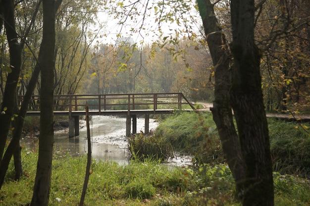 Красивая съемка моста через реку в парке в москве осенью