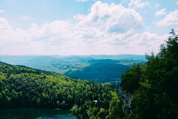 青空に雲の下の丘の上の美しい木のハイアングルショット