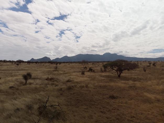 ツァボ西、タイタ丘、ケニアの壮大な雲の下のフィールドの美しい景色