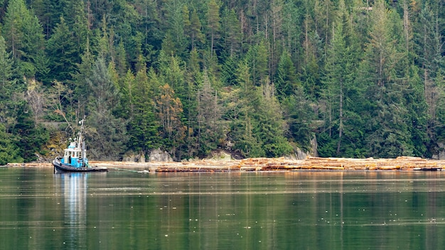 Красивый зеленый пейзаж на озере в сквомиш, британская колумбия, канада