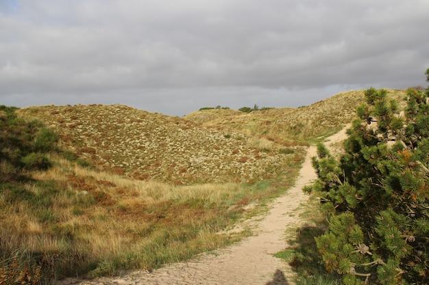 曇り空の下で捉えられた人けのない丘を通る道路の美しい景色